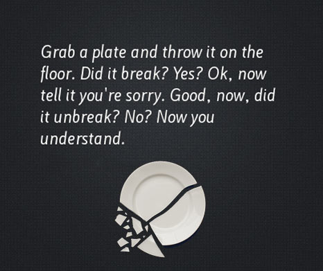break-plate-sorry