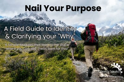 Nail Your Purpose